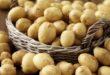 Украина впервые начала импортировать картофель из Узбекистана