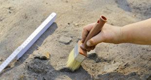 Узбекские археологи собираются доказать, что действительно обнаружили Александрию Оксианскую