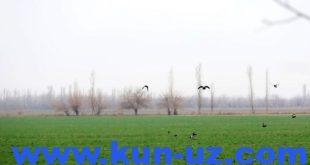 w2ikfehigchbuh-wqryjukvax-uljqg1
